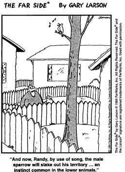 Farside Natural Selection Cartoon